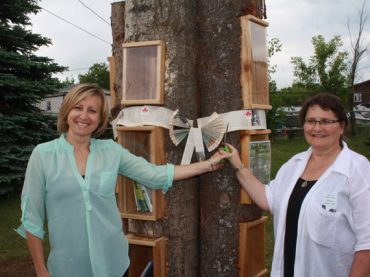 Literature comes alive at Killaloe Station Park