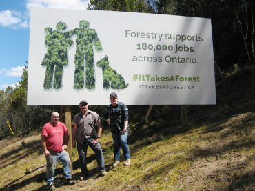 Local man launches forestry sign campaign