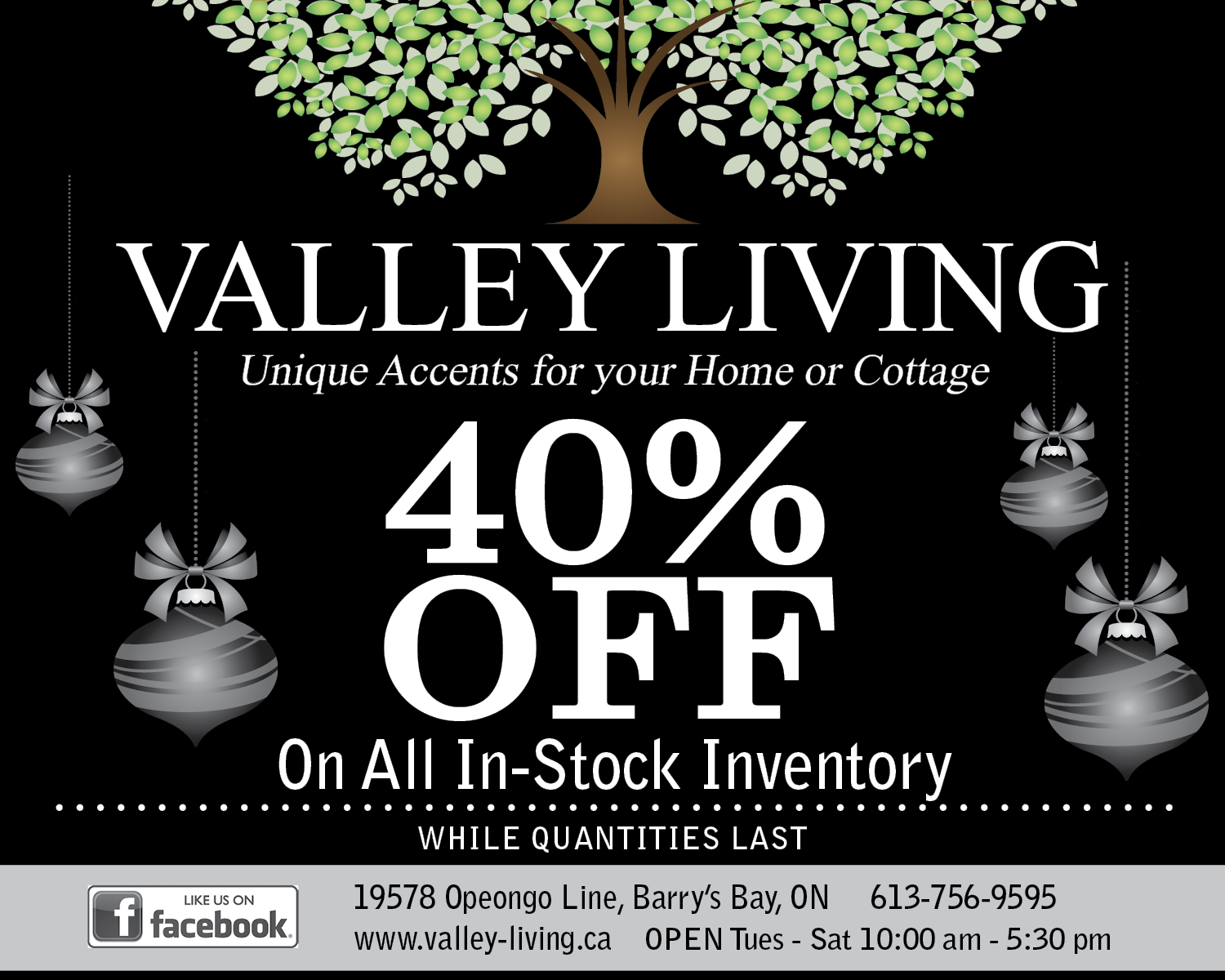 11-28-BLACK-FRIDAY-Valley-Living-3x8.png