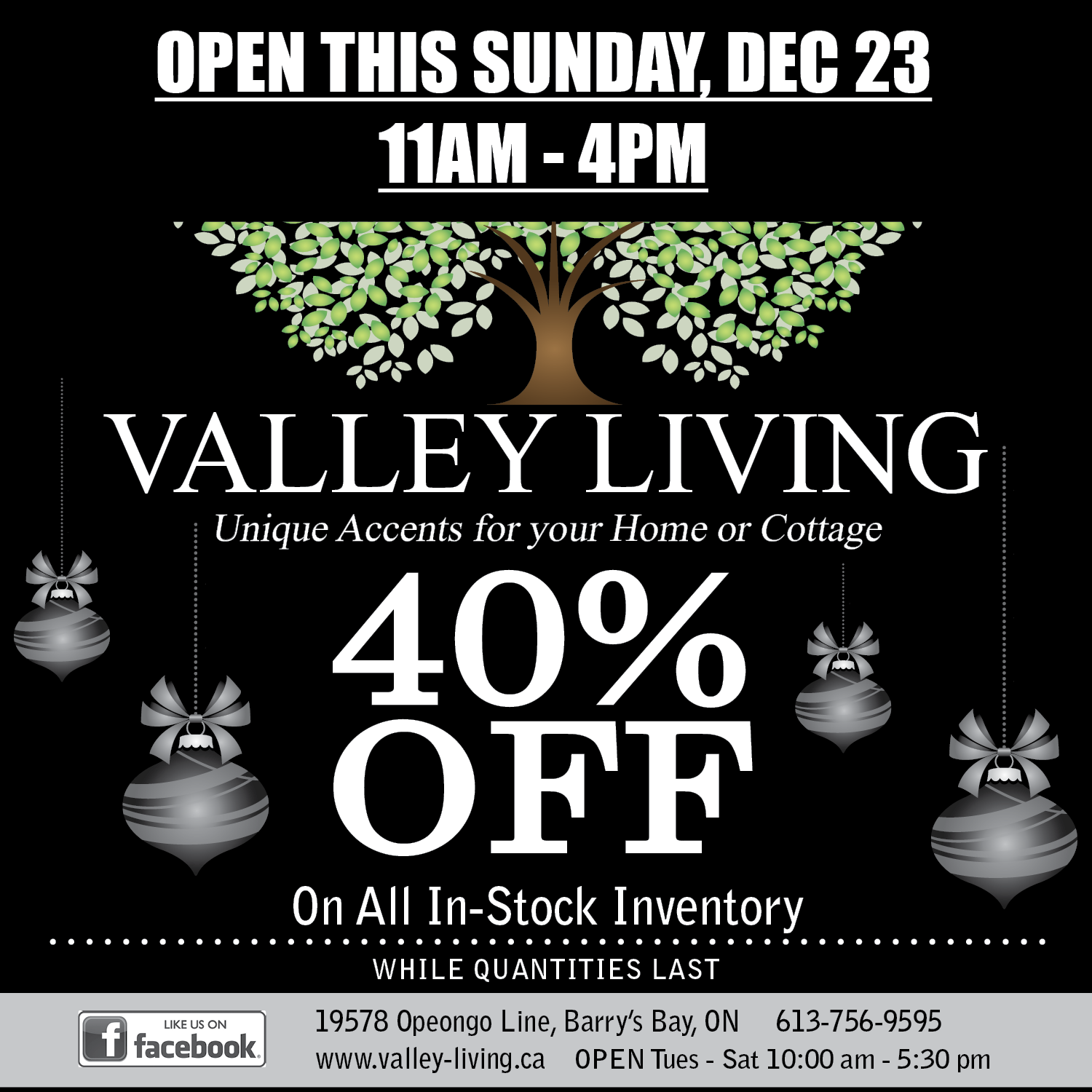 12-19-BLACK-FRIDAY-Valley-Living-3x8.png