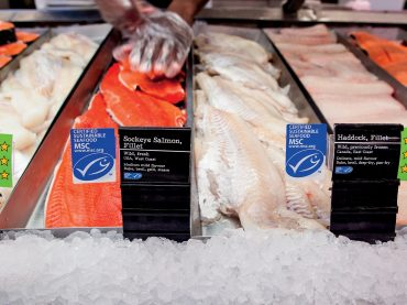 How to buy better seafood for your family