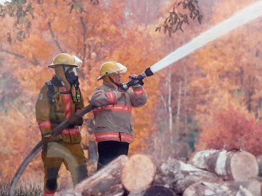 Former Fire Chief David Afelskie resigns