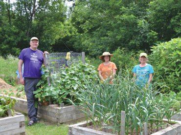Garden Tour a reflection of Killaloe's amazing community spirit and thriving spirit of endurance